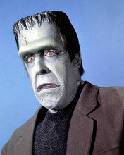 This is an image of 264024 Fred Gwynne Photograph & Poster