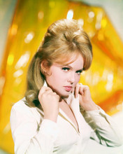 This is an image of 264027 Joey Heatherton Photograph & Poster