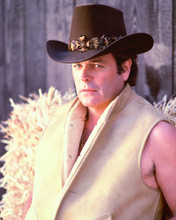 This is an image of 269382 Robert Wagner Photograph & Poster