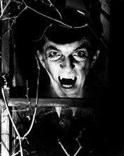 This is an image of 186329 Dark Shadows Photograph & Poster