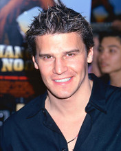 This is an image of 269987 David Boreanaz Photograph & Poster