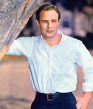 This is an image of 274297 Marlon Brando Photograph & Poster