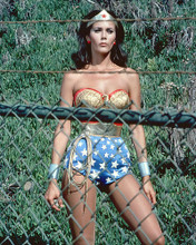 This is an image of 274327 Lynda Carter Photograph & Poster