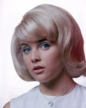This is an image of 274416 Sue Lyon Photograph & Poster