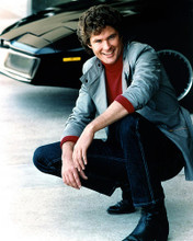 This is an image of 274592 David Hasselhoff Photograph & Poster