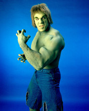 This is an image of 275747 Lou Ferrigno Photograph & Poster