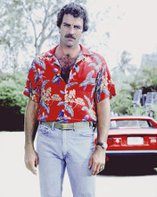 This is an image of 277103 Tom Selleck Photograph & Poster