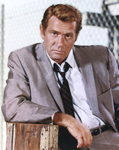 This is an image of 277273 Darren McGavin Photograph & Poster