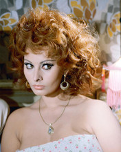 This is an image of 277895 Sophia Loren Photograph & Poster
