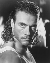 This is an image of 189072 Jean-Claude Van Damme Photograph & Poster