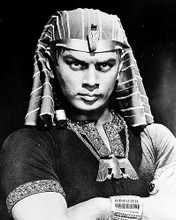This is an image of 171708 Yul Brynner Photograph & Poster