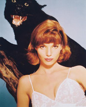 This is an image of 214493 Elsa Martinelli Photograph & Poster