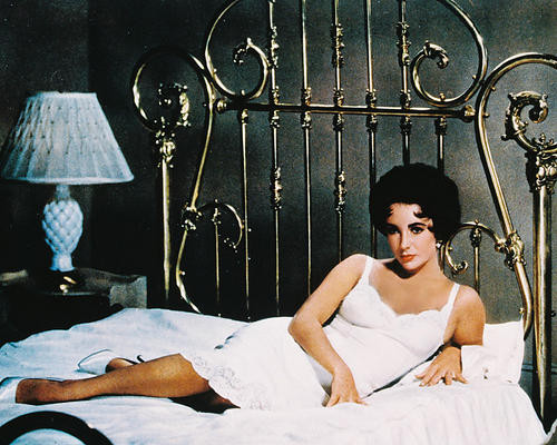 This is an image of 231162 Elizabeth Taylor Photograph & Poster