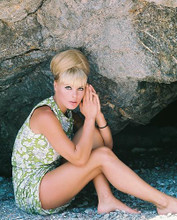 This is an image of 234403 Elke Sommer Photograph & Poster