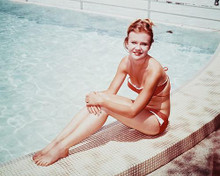 This is an image of 235587 Hayley Mills Photograph & Poster