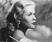 This is an image of 175510 Elizabeth Montgomery Photograph & Poster