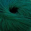 Cascade 220 Superwash Wool Yarn - 1950 Hunter Green