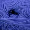Cascade 220 Superwash - 814 Hyacinth
