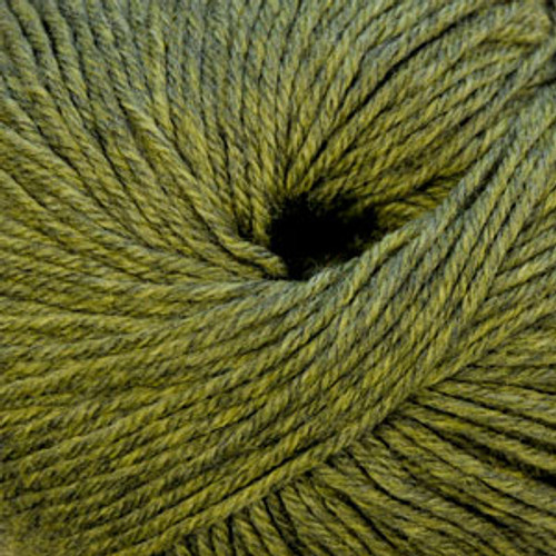 Cascade 220 Superwash #1919 Turtle