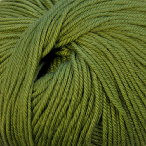 Cascade 220 Superwash #841 Moss