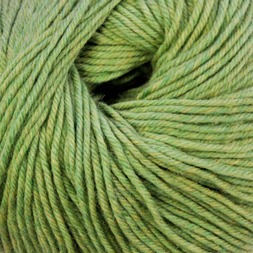 Cascade 220 Superwash Wool Yarn - 905 Celery