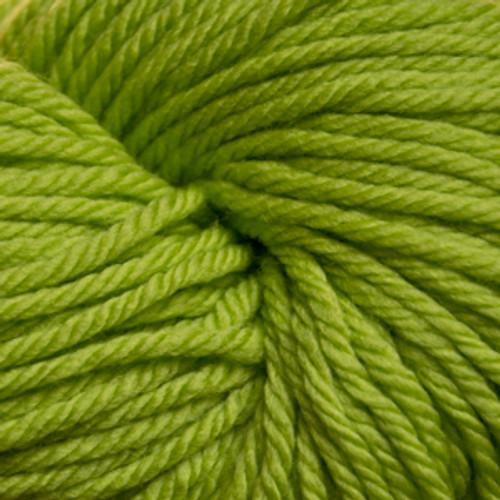 Cascade 220 Superwash Aran - Jasmine Green 240