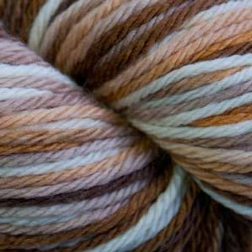 Cascade 220 SuperWash Sport Wool Yarn - 107 Browns Multi