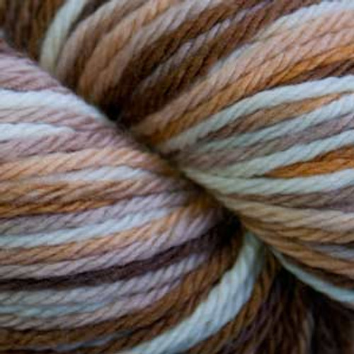 Cascade 220 SuperWash Sport Wool Yarn - 107 Browns Multi