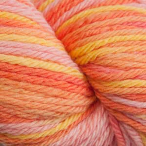 scade 220 SuperWash Sport Wool Yarn - 106 Citrus Multi