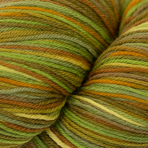 Cascade Heritage Yarn Paints - Autumn 9923