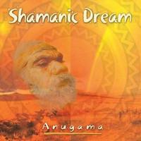 Shamanic Dream CD (1333648477)