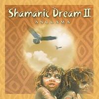 Shamanic Dream 2 CD (1333648718)