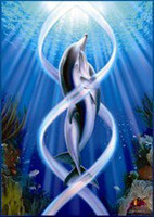 Dolphin Rapture (DR) (9910)