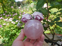 Star Rose quartz sphere (1466501021)