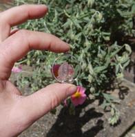 Harlequin quartz (111778)