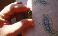 Polished Peridot (112630)