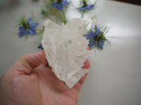 Angel Wing Selenite (113015)
