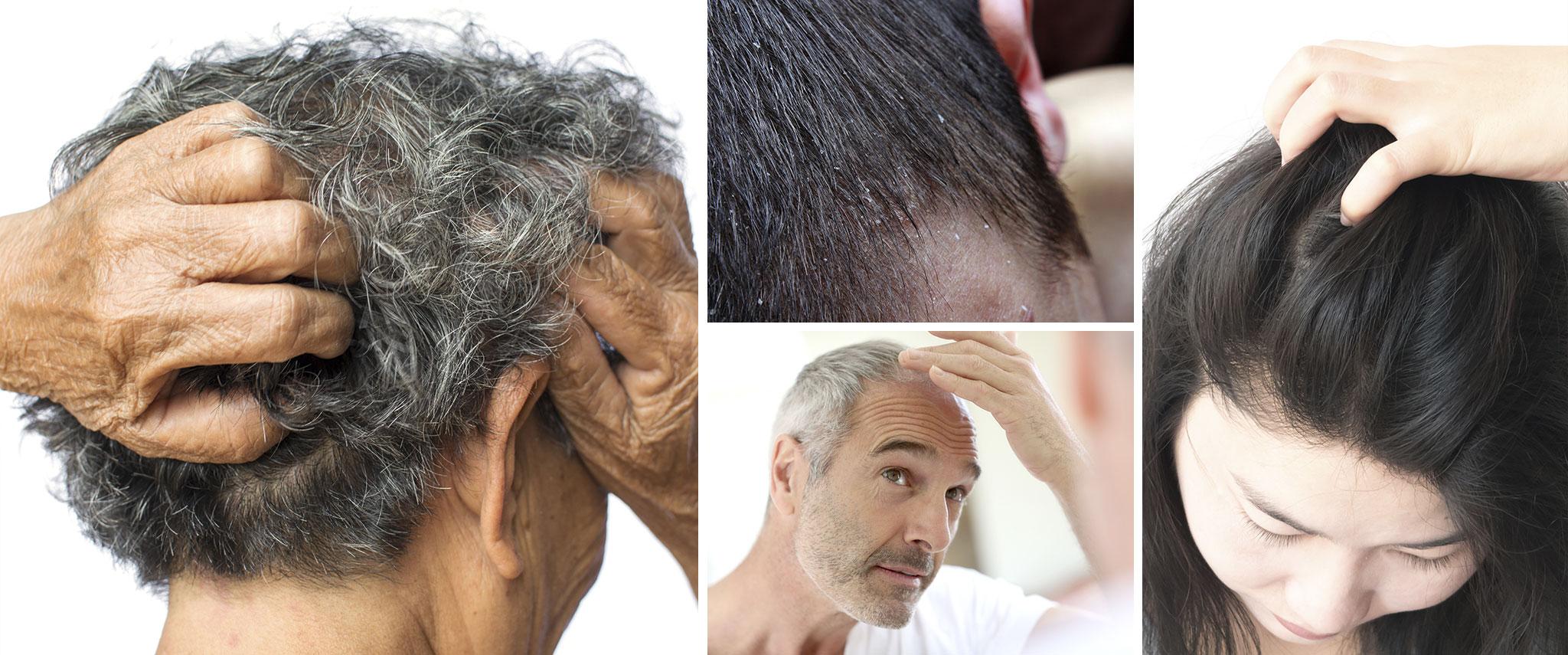 hair-main.jpg