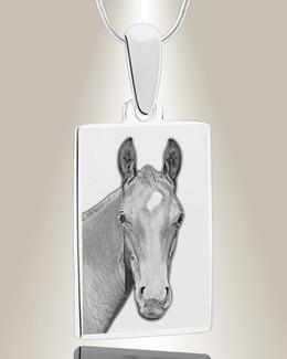 Rectangle Photo Engraved Silver Pet Keepsake