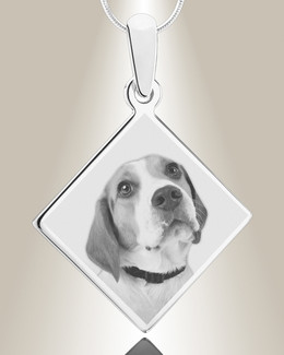Diamond Photo Engraved Stainless Pet Keepsake