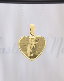 Heart Photo Engraved Gold Plated over Stainless Pet Guardian