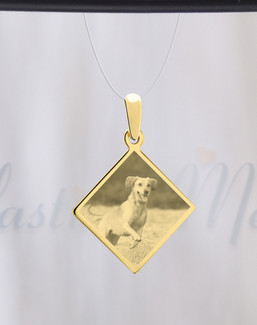 Diamond Photo Engraved Gold Plated over Stainless Pet Guardian