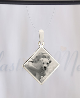 Diamond Photo Engraved Stainless Pet Guardian