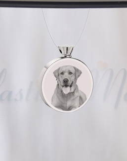 Round Stainless Steel Photo Engraved Pet Ash Guardian
