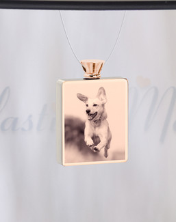 Rectangle Rose Gold Plated Photo Engraved Pet Ash Guardian