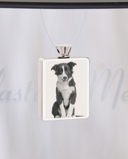 Rectangle Stainless Steel  Photo Engraved Pet Ash Guardian