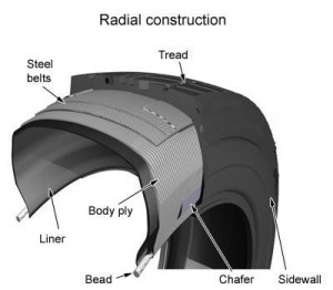 What are radials