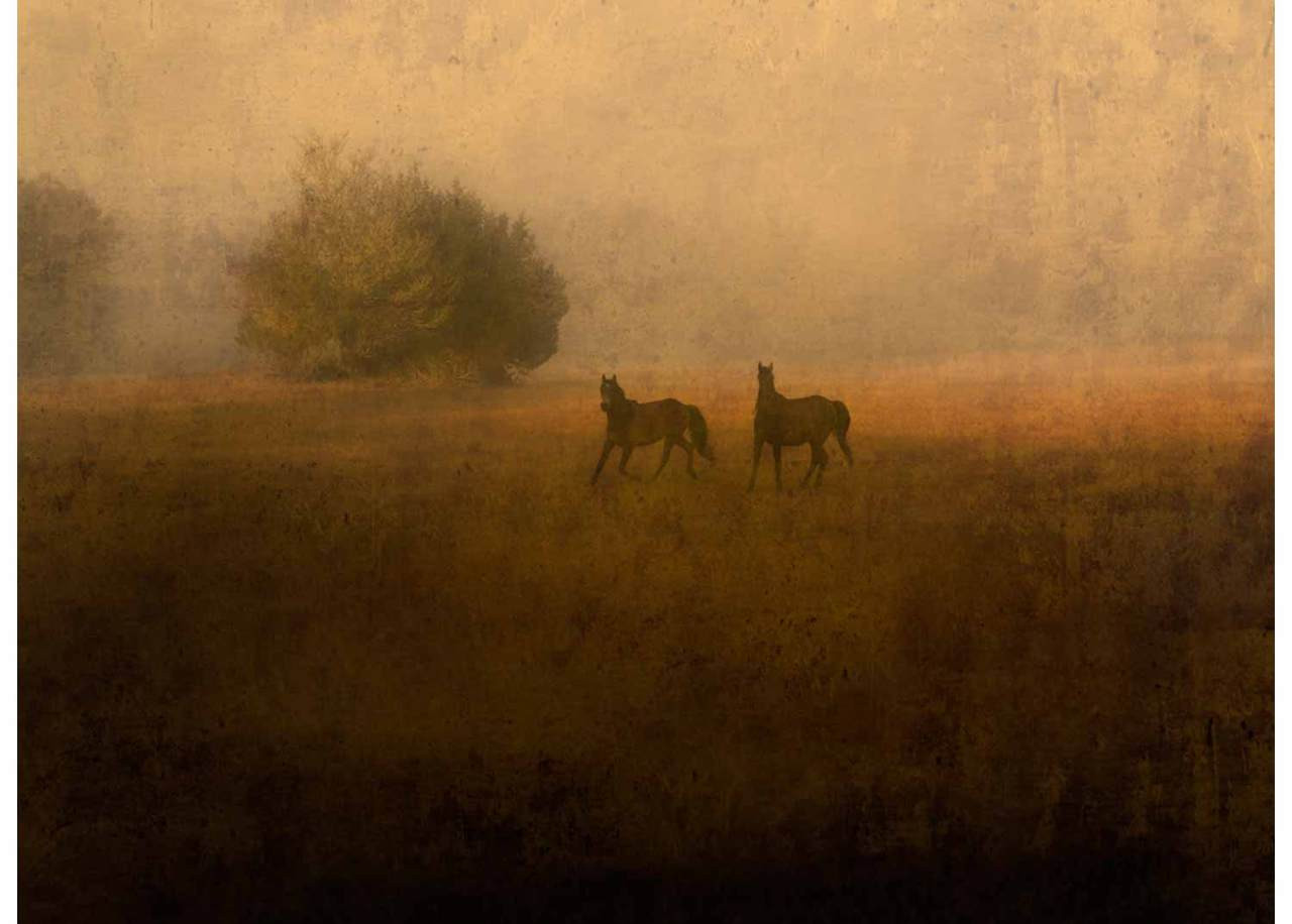 Jack Spencer, Signed Limited Edition and Signed Stand-Alone Varnished Print