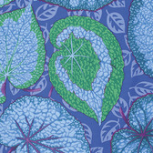 Philip Jacobs PWPJ070 Big Leaf Blue Cotton Quilting Fabric By Yard