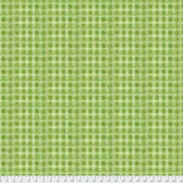 Natalie Malan Crisp Petals PWNM005 Captivating Check Lime Fabric By Yd